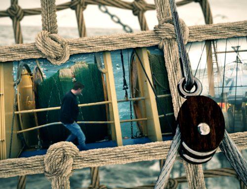 Hollandse vissers